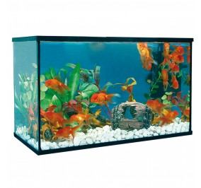 Acuario Happy Pet Kit