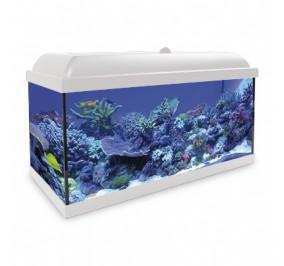 acuario marino hydra l