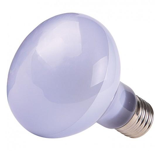 Bombilla Calefactora Luz Diurna