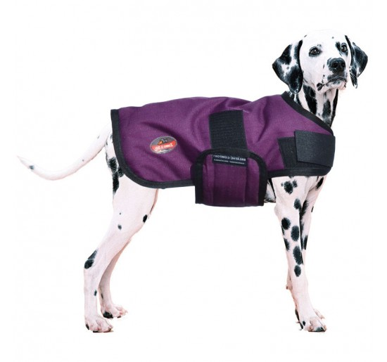 Abrigo XT-Dog Winter
