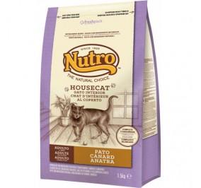 Nutro para gatos HouseCat